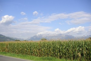 Wikimedia-Paranoid_Field,_corn,_Liechtenstein,_Mountains,_Alps,_Vaduz,_sky,_clouds,_landscape